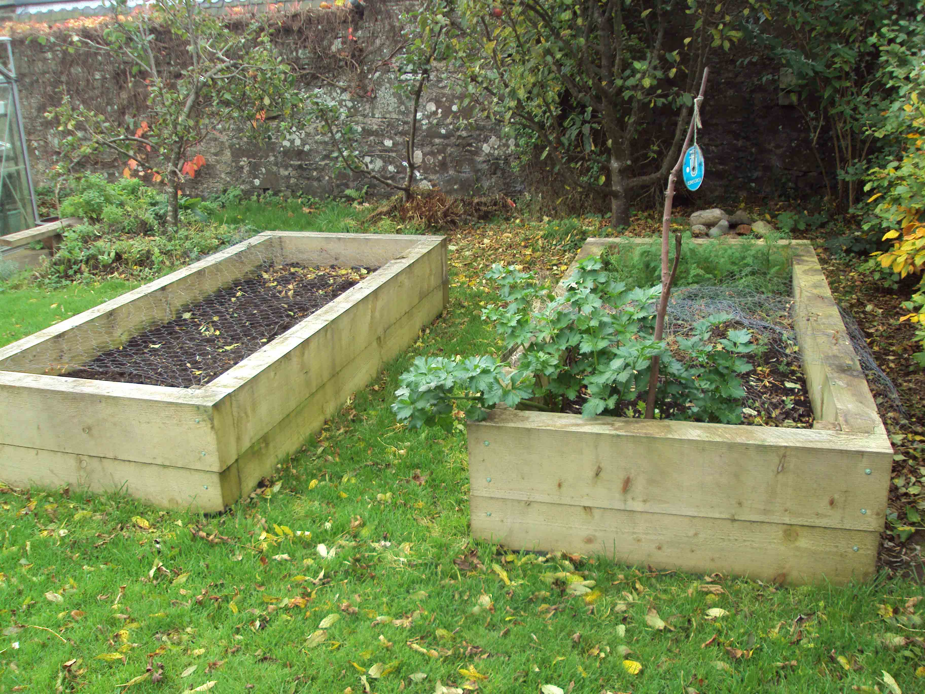 Raised beds1 and 2.jpg